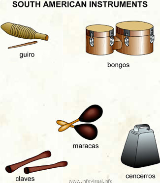 South american instruments  (Visual Dictionary)