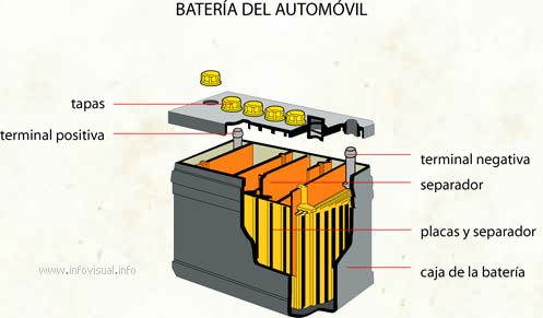 Batería del automóvil (Diccionario visual)