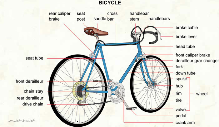 Bicycle  (Visual Dictionary)