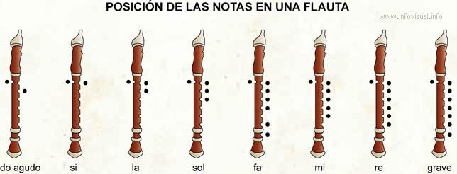 Notas en una flauta (Diccionario visual)