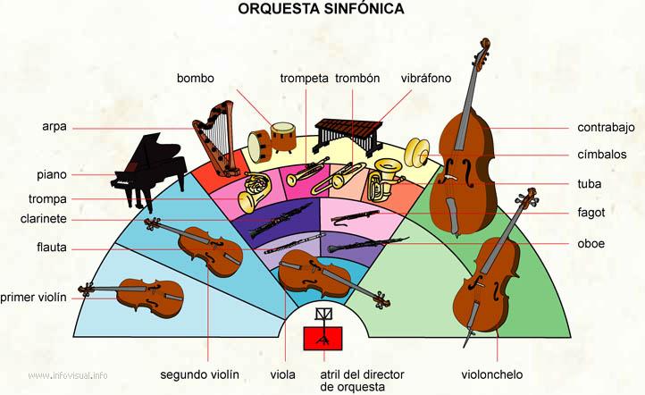 Orquesta sinfónica (Diccionario visual)