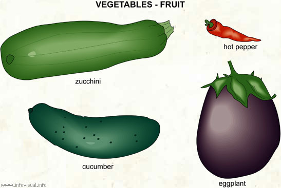 Vegetable  (Visual Dictionary)