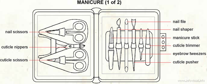 Manicure  (Visual Dictionary)