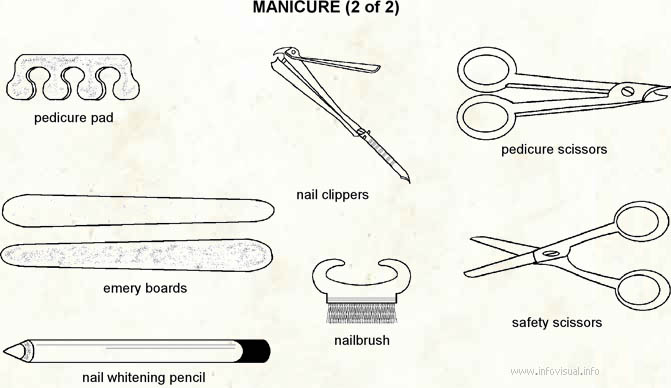 Manicures  (Visual Dictionary)
