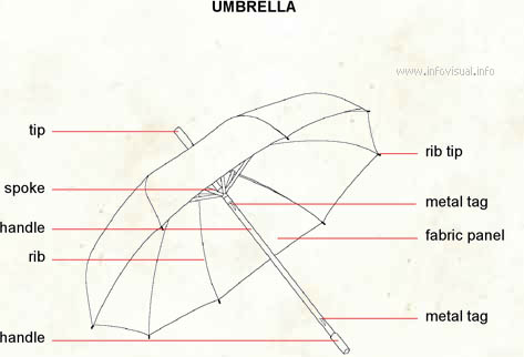 Umbrella  (Visual Dictionary)